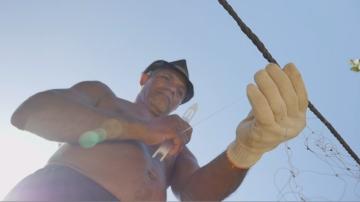 pescador_peixes-mortos